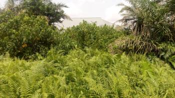 Standard Plot of Land 60 By 120, Akesan, Igando, Ikotun, Lagos, Residential Land for Sale