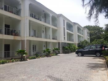 Diplomatic Finished & Fully Serviced 2 Bedrooms Apartment, Off Alvan Ikoku Way, Maitama District, Abuja, Flat for Rent