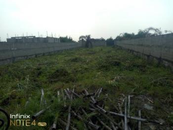 1271sqm Residential Land, Oteyi Royal Garden Estate, Amuwo Odofin, Isolo, Lagos, Residential Land for Sale