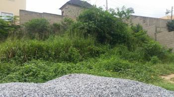 Land, Olowora, Omole Phase 2, Ikeja, Lagos, Mixed-use Land for Sale