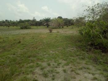 Dry Land, Katopp Royalty Estate, Ogogoro, Ibeju Lekki, Lagos, Mixed-use Land for Sale