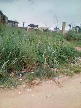 a Plot of Land Located on Major Road, Along Rochas Rd,  Before Orji Flyover, Mbieri, Owerri, Imo, Mixed-use Land for Sale