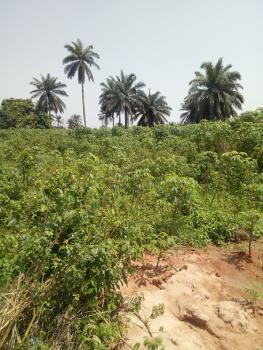 Acres of Land, Oloparun, Owode, Atan Ota, Ado-odo/ota, Ogun, Mixed-use Land for Sale