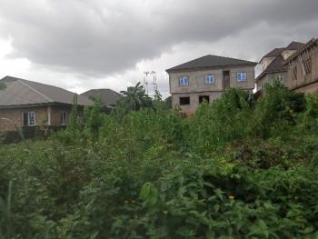 Full Plot of Land in a Very Decent Area Fenced Gate, Peace Estate, Baruwa, Ipaja, Lagos, Land for Rent