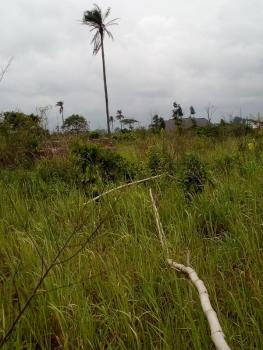2 Plots of Land, Reliance Estate Phase 4, Azagba Ogwashi, Aniocha South, Delta, Residential Land for Sale