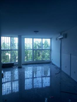 a Very Good Serviced 2bedroom Flat with 1 Room Bq, Asokoro District, Abuja, Flat for Rent