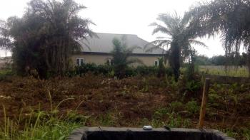 Standard Full Plot 60 By 120, Good Location, Akesan, Alimosho, Lagos, Residential Land for Sale
