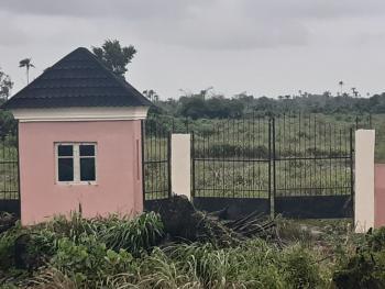 Big Land Little Budget, Ibeju Lekki, Lagos, Land for Sale