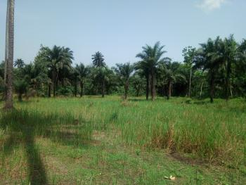 6-7 Acres of Land, Olukobare, Orerokpe Axis, Ethiope East, Delta, Mixed-use Land for Sale