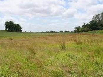 a Land Measuring 3000sqm, Ilasan, Lekki, Lagos, Mixed-use Land for Sale