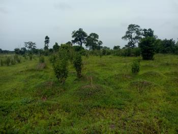Land, Opposite Federal Housing, Awka, Anambra, Mixed-use Land for Sale