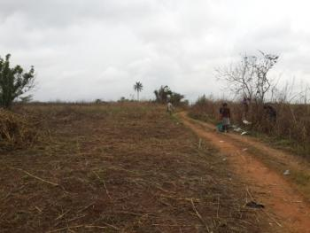 5318 Acres of Land, Along Ajegunle, Papa Ilaro Road, Obafemi Owode, Ogun, Commercial Land for Sale