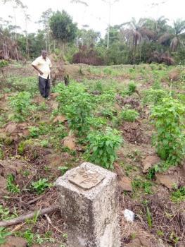 Nice Commercial Land, Along Patani-port Harourt Road, Ogbogbene Area, Bomadi, Delta, Commercial Land for Sale