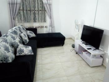 Furnished & Serviced 1 Bedroom Flat, Katampe, Abuja, Mini Flat Short Let