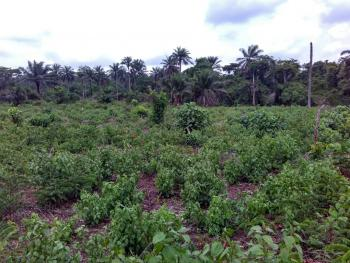 40 Acres of Land, Facing Ife/ibadan Expressway, Egbeda, Oyo, Mixed-use Land for Sale