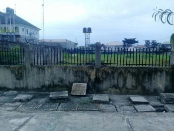 Fully Fenced and Well Located Two (2) Plots of Commercial Land, Peter Odili Road, Trans Amadi, Port Harcourt, Rivers, Commercial Land for Rent