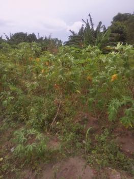 Standard 2 Plots of Fenced Land, Behind Lekki Pearl Estate, Olokonla, Ajah, Lagos, Mixed-use Land for Sale