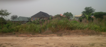 Two Plots in a Developing Estate, Whales Estate, Off Lagos Ibadan-exp, Opposite Christopher University By Rccg Youth Centre, Mowe Ofada, Ogun, Residential Land for Sale