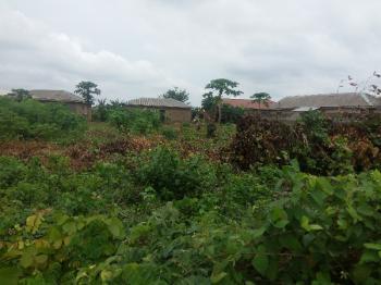Full Plot of Land in a Decent Area, Aiyetoro, Ayobo, Lagos, Land for Sale