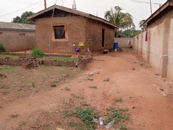 Mini Flat on Almost Half Plot of Land, Aiyetoro, Ipaja, Lagos, Mini Flat for Sale