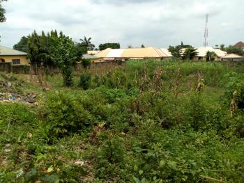 Well Located 2000sqm Land, Abuja Clinic Road, Opposite Echoscan, Karu, Abuja, Residential Land for Sale