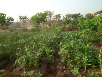 1500sqm. Land, Maitam 2, Maitama District, Abuja, Residential Land for Sale
