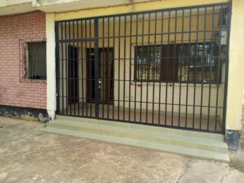 7 Bedroom Detached Duplex, 2nd Avenue, Trans Ekulu, Enugu, Enugu, Detached Duplex for Rent