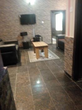 Fully Finished & Service Mini Flat, Mabogunje Road, Off Ogunyemi Road, Oniru, Victoria Island (vi), Lagos, Mini Flat for Rent