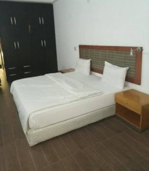 Well Furnished and Serviced One Bedroom Apartment with Swimming Pool and Gym, Asokoro District, Abuja, Mini Flat for Rent