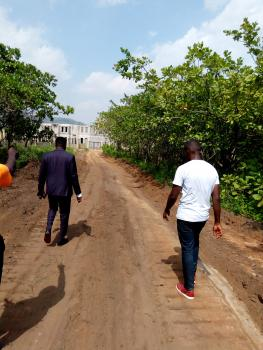 1700qm of Residential Land, Diplomatic Zone, Ecowas Quarters, Katampe Extension, Katampe, Abuja, Residential Land for Sale