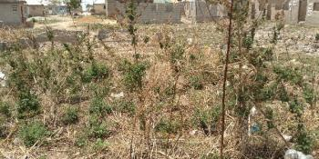 1000sqm of Flat Land in a Developed Neighborhood, Chikakore, Kubwa, Abuja, Residential Land for Sale