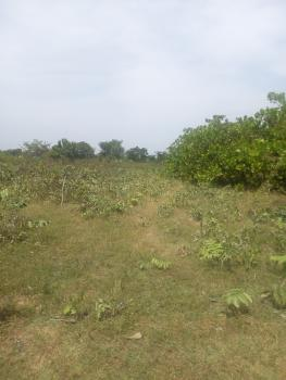 50ft X 100ft [one] Plot of Land, Behind Metropolitan Square, Off House of Assembly, Asadam Area, Ilorin, Ilorin West, Kwara, Residential Land for Sale