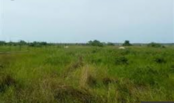 1 Acre of Land, Lekki Expressway, Lekki, Lagos, Commercial Land for Sale