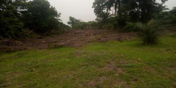Bare Land, Behind Opic Estate, Berger, Arepo, Ogun, Mixed-use Land for Sale