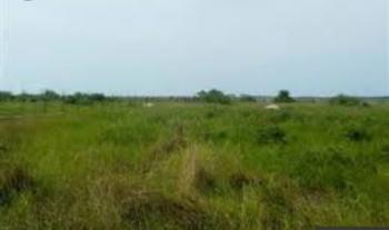 2000 Sqm of Land, J41, Banana Island, Ikoyi, Lagos, Residential Land for Sale
