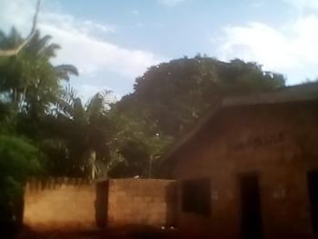 a 12 Room Hostel Bungalow, Off Nkpor Junction, Around University of Nigeria, Nsukka, Enugu, Detached Bungalow for Sale