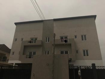 Very Clean 3 Bedroom Semidetached Duplex, Ologolo, Lekki, Lagos, Semi-detached Duplex for Rent