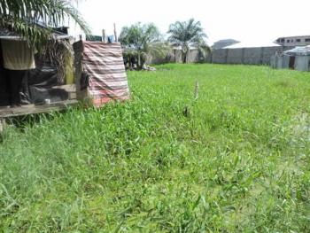 2 Plots of Land, Alpha Beach Road, Chevy View Estate, Lekki, Lagos, Residential Land for Sale