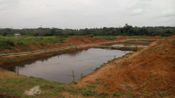 Large Fish Pond 450 Cubic Meters (20,000 Catfish Capacity), Plot 216, I.l.o. Road, Ilara,, Epe, Lagos, Commercial Land for Rent
