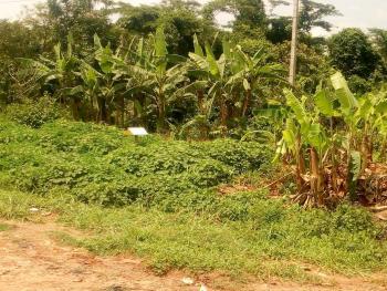100 Acres of Land Directly on The Express Road, Obafemi Owode, Ogun, Industrial Land for Sale