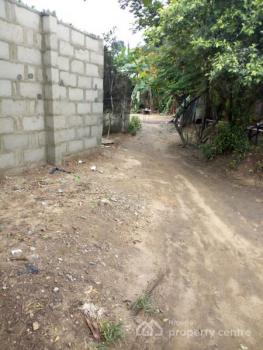 Well Located and Very Dry Residential Land, Nvigwe, Woji, Port Harcourt, Rivers, Mixed-use Land for Sale