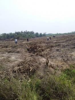 Positin Yourself with C of O Land, Okunraiye, Ibeju Lekki, Lagos, Mixed-use Land for Sale