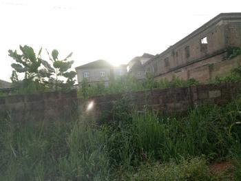Full Plot of Land in a Clean and Secure Area Feneced Gate, Peace Estate Baruwa, Ipaja, Lagos, Land for Sale