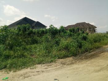 Full Plot of Land in a Very Decent Area, Lasu Igando Road, Ipaja, Lagos, Land for Sale