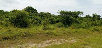 43 Acres of Land, Oke Ogun, Eleranigbe, Ibeju Lekki, Lagos, Residential Land for Sale
