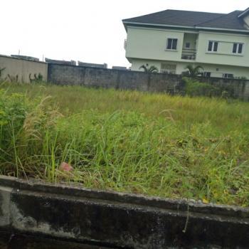 Alternative Road Plots, Chevron Alternative Route, Lekki Expressway, Lekki, Lagos, Mixed-use Land for Sale