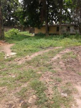 Bare Land, Ikate Elegushi, Lekki, Lagos, Commercial Land for Sale