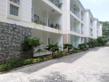 Serviced with 24/7 Electricity 2 Bedrooms, Maitama District, Abuja, Flat for Rent