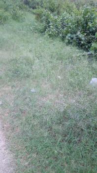 2 Plots of Land, Onosa, Ibeju Lekki, Lagos, Commercial Land for Sale