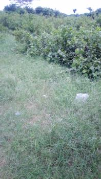 14 Acres of Land, Fenced and Gated, Before Eleko Junction, Ibeju Lekki, Lagos, Industrial Land for Sale